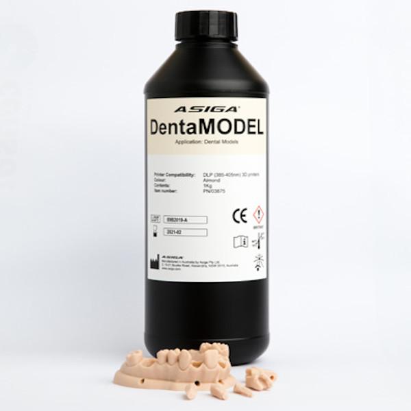 Asiga Denta Model
